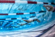 Here are 5 swim sets to push, challenge and improve your swimming from some of the top swimmers and coaches in the world. Workouts For Swimmers, Swimming Workouts, 1992 Olympics, Swimming Motivation, Best Swimmer, Swim Meet, Dumpster Fire, Keep Swimming, Injury Prevention