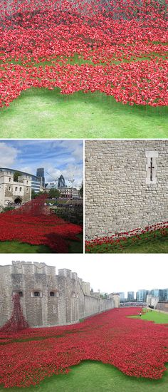 tower-of-london-poppies-rememberance-day-first-world-war #london