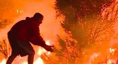 Guy Gets Out Of His Car Next To Raging Wildfire Saves Wild Rabbit  Guy Pulls Over Next To Huge Wildfire Saves Wild Rabbit