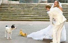 Wedding Photos Gone Wrong 31 Pics Trouwfoto S Grige Huwelijksfoto Bruiloften