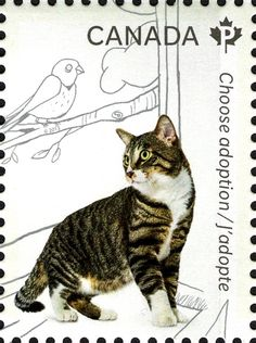 58 Best Cats on Stamps images in 2017 | Stamp, Cats, Postage