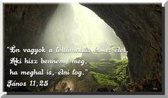 Bible, Biblia, The Bible