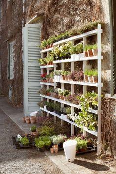 Vertical vegetable garden on shelves - an easy way to create a community garden in a small or urban area!