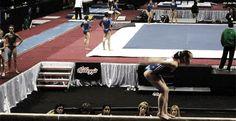 Katelyn Ohashi& Arabian+back handspring (gif) - Gymnastics Academy, Gymnastics Routines, Gymnastics Quotes, Gymnastics Videos, Gymnastics Floor, Aerial Hammock, Aerial Silks, Amazing Gymnastics, Artistic Gymnastics