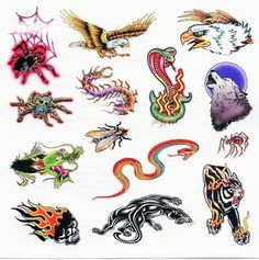 """Color Animal Mix Temporaray Tattoo by Tattoo Fun. $3.95. Sheet size: 6""""x6"""". These color tattoos are perfect for any boy or man. The fierce animal images range in size by 1""""-3"""" x 1""""-2"""""""