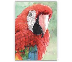Wunderschöne Grußkarte mit illustriertem Ara/ Papagei - http://www.1agrusskarten.de/shop/wunderschone-gruskarte-mit-illustriertem-ara-papagei/    00021_0_2670, Grusskarte, Illustration, Klappkarte, KunstAra, PapageiVogel, Tiermotiv00021_0_2670, Grusskarte, Illustration, Klappkarte, KunstAra, PapageiVogel, Tiermotiv