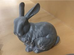 Stanford Bunny -- Digitized! by Strathcona