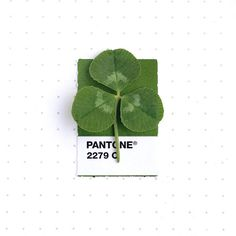Inka Mathews pairs everyday objects with matching Pantone swatches - see more on blog