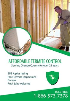 Affordable Termite Control is offering FREE Termite Inspections! With their unique %100 eco-  sc 1 st  Pinterest & The NPMA estimate that termite cause $5 billion in property damage ...