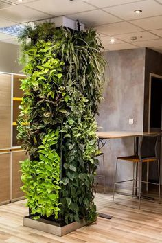 9 Ways to Decorate a Rental Home with Plants | Balcony Garden Web Outdoor Wall Fountains, Garden Fountains, Outdoor Walls, Water Fountains, Vertical Garden Design, Vertical Gardens, Garden Wall Designs, Planting Bulbs In Spring, Garden Solutions