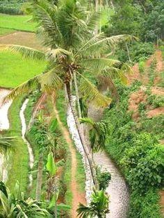 Kerala... India