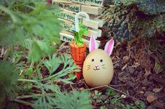 Coffret Cadeau Pâques Avril, Eggs, Quirky Gifts, Casket, Egg, Egg As Food