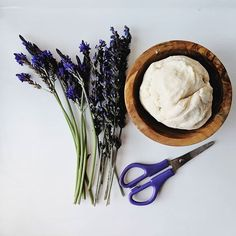Soothing lavender and natural playdough for this mornings invitation to play. Neither of us are morning people, so a quiet activity that's ready to go lets us both wake up more gracefully:) We get so much use out of our garden. Our lavender plants pretty much grow themselves and are perfect for playdough and mud kitchens! For a list of my 10 favorite plants (anyone;) can grow with kids check out the link on my bio! Plus, kids love cutting things other than paper, and it's great for muscle… Sensory Bins, Sensory Play, Sensory Activities For Preschoolers, Lavender Plants, Mud Kitchen, Morning People, Science Projects, Mornings, Ash