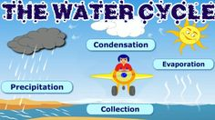 Hop in the cockpit with Explorer Dan to explore the four parts of the water cycle. Enjoy the flight! Recommended for Grades: 1, 2. Kids Educ SUBSCRIBE TO US ...