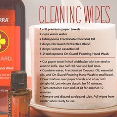 Homemade cleaning wipes no chemicals