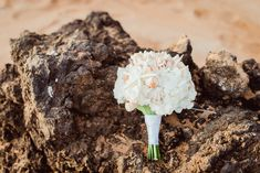 Breathtaking Wedding Bouquet: Beach shell bouquet with white flowers. Click to blog for more gorgeous bouquet ideas.