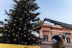 Piazza Duomo è l'incantevole scenario dell'albero di Natale regalato alla Città di Milano. 30.000 luci led a basso consumo energetico e 1.000 fiocchi gialli vestiranno l'abete di 30 metri. #IlluminaMI