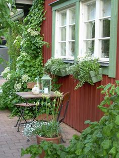 back near side walk & driveway Red Cottage, Garden Cottage, Home And Garden, Sweden House, Red Houses, House Plants Decor, My Secret Garden, Outdoor Gardens, Outdoor Patios