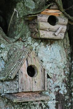 Joy's Jots, Shots & Whatnots: Tootie's Birdhouses - love these aged birdhouses!