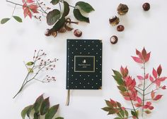 My lovely planner 2018 Www.mylovelyplanner.de