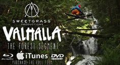 \o/ Esquiar sem neve e na floresta? Forest Ski Segment From Valhalla from Sweetgrass Productions on Vimeo Koi, Ski Movies, No Crying In Baseball, Go Skiing, Ski And Snowboard, Inspirational Videos, Great Videos, Documentary Film, Winter Sports