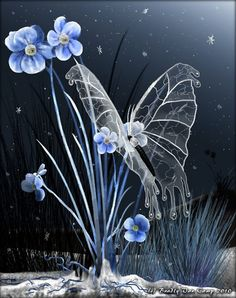 The Glass Winged Butterfly! I would love a print of this!!!