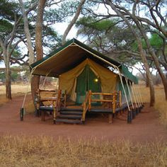 Each of the twelve luxurious canvas pavilions are shaded by tall acacia trees and all are within sight of the well-frequented water hole which regularly draws lions, leopards and resident bull elephants for which Sanctuary Swala is famed.