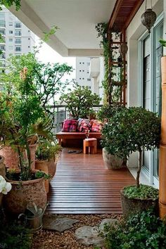 Landscape It - How To Make The Most Of Your Balcony - Photos