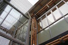 Enerji Verimli Bambu Ev