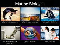 i wanted to be a marine biologist when i grew up (for 1 and 3, but with dolphins). And then i realized the reality, and science and i just aren't friends.