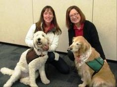 Trauma therapy dogs help suburban teens deal with test angst. The Hinsdale Humane Society brought in trained therapy dogs to help teens deal with the stress of final exams while studying this weekend at the Downers Grove Public Library. Gay Pollitt, left, with her dog, Delilah, and Mary Beth Turek with her dog, Maggie, were part of a team that visited with nearly 200 students.