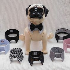 Your dog might scratch his bowl when he is hungry. Your dog might stare at you when looking for love. Pet Shop, Pet Shipping, Little Live Pets, Cute Dog Collars, Dog Suit, Dog Clothes Patterns, Pet Costumes, Animal Fashion, Dog Dresses
