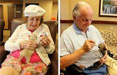 Un refuge animalier s'associe avec une maison de retraite pour sauver des chatons orphelins.