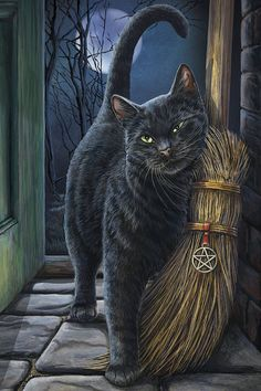 Black Cat Wall Plaque Art Print Lisa Parker Brush With Magick - Black Cat with Broom Besom Crazy Cat Lady, Crazy Cats, I Love Cats, Cute Cats, Halloween Pictures, Halloween Cat, Image Chat, Arte Obscura, Witch Cat