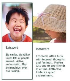 "Myers-Briggs personality test  Explaining the ""E"" extravert to ""I"" introvert continuum / spectrum."