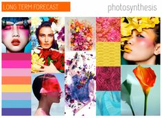 TREND COUNCIL SS 2015- PHOTOSYNTHESIS