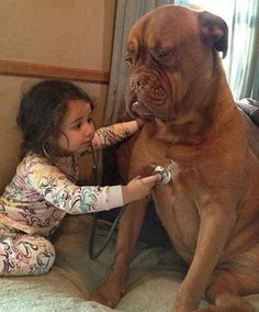 Adorable Pictures of Little Kids With Big Dogs - Pets or Animals Animals And Pets, Baby Animals, Funny Animals, Cute Animals, Animals Photos, Nature Animals, Dogs And Kids, Big Dogs, Giant Dogs