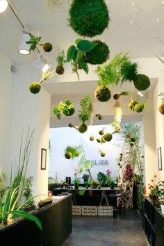 Ikebanart : ikébana et kokédama 49 rue Lucien Sampaix Paris 10
