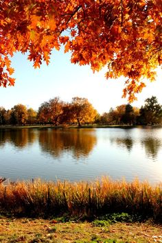 """""""Fall has always been my favorite season. The time when everything bursts with its last beauty, as if nature had been saving up all year for the grand finale. Beautiful World, Beautiful Places, Beautiful Pictures, Autumn Scenes, Autumn Aesthetic, Fall Pictures, Belle Photo, Beautiful Landscapes, Autumn Leaves"""