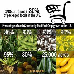 Take a pledge to go non-GMO by sharing this post. Learn more about how to avoid GMOs here: http://gmoinside.org/faqs