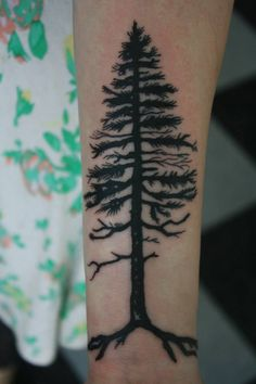 pine tree sketch tattoo - Căutare Google