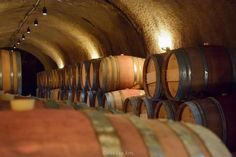 Robert Sinskey Winery