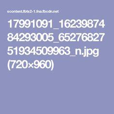 17991091_1623987484293005_6527682751934509963_n.jpg (720×960)
