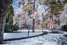 #Berlin - #Winter #Look at www.schlosshotelberlin.com #Beautiful #Sunny #Saturday, Jan 31st in Berlin #Grunewald #SCHLOSSHOTEL Im GRUNEWALD