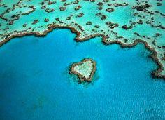 Hear reef, dans la Grande barrière de corail, en Australie