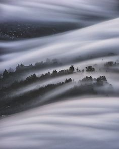 w e a v e | marin county, california  From an early August evening spent watching and capturing the incoming fog perched on a small rock with @larrynienkark and @nicholassteinbergphotography. It's a minor miracle that we all managed to NOT bump each other's tripods! . I spent this morning reviewing my Marin County photos from the past few months and I have to say, 2016 has been an AMAZING year for fog. While fog season is ending, I'm not too terribly sad because with the arrival of more…