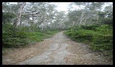 """Story Behind Swarg Ki Seedhi. हिमांचल प्रदेश के सिरमौर जिले के मुख्यालय नाहन से ७ किलोमीटर दूर घने जंगलों के मध्य """"पौड़ीवाला शिवधाम"""" स्थित है."""