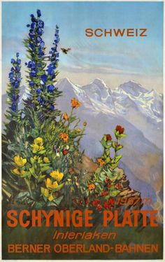 1950 Schynige Platte (Berner Oberland railways), Switzerland vintage travel poster