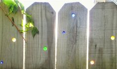 How to bring new life to a shabby privacy fence with marbles and sunshine...