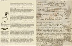 Leonardo Da Vinci's Codex on the Flight of Birds   21   #DaVinci #BirdCodex   Pinned by Cormael